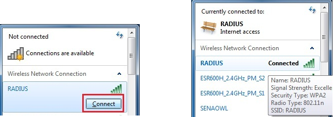 What is Radius Authentication and Can I use this type of
